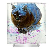 New Kitty Blue Shower Curtain