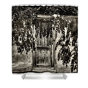 New Mexico Door Shower Curtain