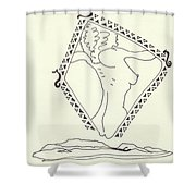 New Mexico Moon 5 Shower Curtain