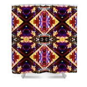 New Mexico Neon Shower Curtain by Glennis Siverson