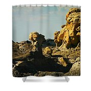 New Mexico Red Rock Shower Curtain