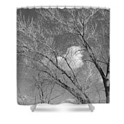 New Mexico Series - A Cloud Behind Black And White Shower Curtain