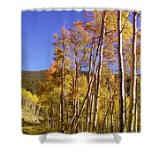 New Mexico Series - Autumn On The Mountain Shower Curtain
