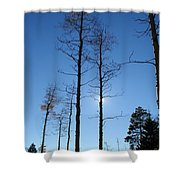 New Mexico Series - Bare Tree Sky  Shower Curtain