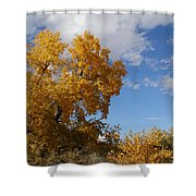 New Mexico Series - Desert Landscape Autumn Shower Curtain