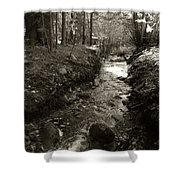 New Mexico Series - Late Winter Streambed Shower Curtain