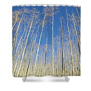 New Mexico Series - Leaf Free On The Mountain Shower Curtain