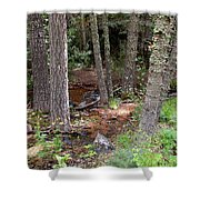 New Mexico Series - Near The River Shower Curtain