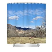 New Mexico Series - Winter Desert Beauty Shower Curtain