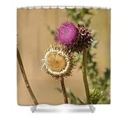 New Mexico Thistle II Shower Curtain