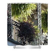 New Orleans Afternoon Light Shower Curtain