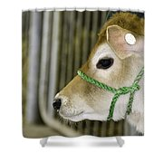 New To The Barn Shower Curtain