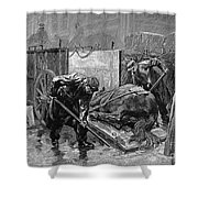 New York: Aspca, 1888 Shower Curtain