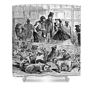 New York: Dog Pound, 1866 Shower Curtain