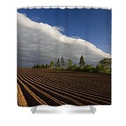 Newly Planted Potato Field And Clouds Shower Curtain