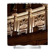 Nighttime Palace Shower Curtain