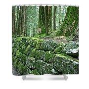 Nikko Moss Shower Curtain