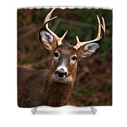 No Hunting Allowed Shower Curtain
