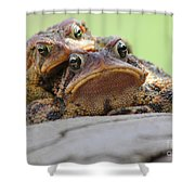 No Privacy Shower Curtain