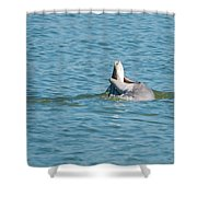 No Snook Limit For This Guy Shower Curtain