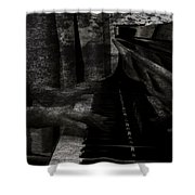 Nobodys  Notes  Shower Curtain
