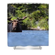 North American Hippo II Shower Curtain