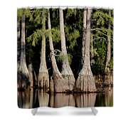 North Carolina - Lake Shower Curtain