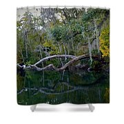 North Florida River Reflections Shower Curtain