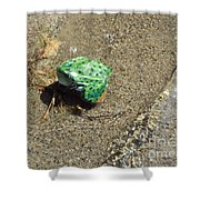 Northern Leopard Frog At The Lake Shower Curtain