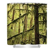 Northwest Mossy Tree Shower Curtain