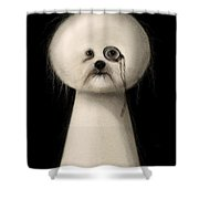 Not A Keyhole Shower Curtain