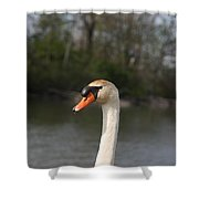 Not For Sale Test Image Shower Curtain