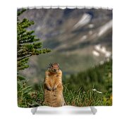 Not Much...whatz Up With You? Shower Curtain
