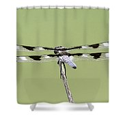 Dragonfly - Not Wilbur's And Orville's Idea Was It Shower Curtain