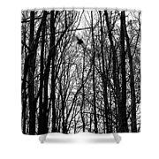 November Wood Shower Curtain