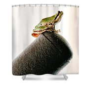 Now What? Shower Curtain