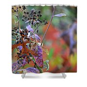 Ny Fall 2 Shower Curtain