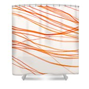 Nylon Fibers Shower Curtain