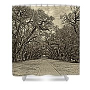 Oak Alley 3 Antique Sepia Shower Curtain