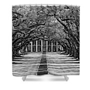 Oak Alley Monochrome Shower Curtain by Steve Harrington