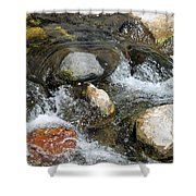 Oak Creek Shower Curtain