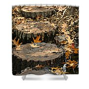 Oak Creek Steps Shower Curtain