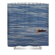 Oak Leaf Floating Shower Curtain