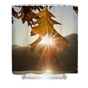 Oak Leaf Shower Curtain