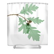 Oak Leaves, X-ray Shower Curtain