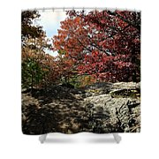 Oak Rock Shower Curtain