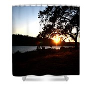 Oak Tree Sunset Shower Curtain