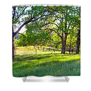 Oak Trees In The Spring Shower Curtain
