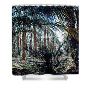 Oasis At Death Valley Shower Curtain