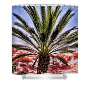 Oasis Palms Shower Curtain